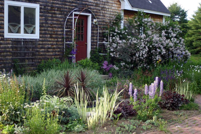 Garden june 09 1