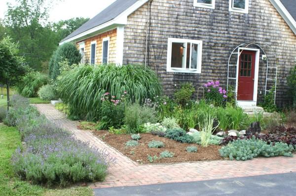 Garden_tour_lavender